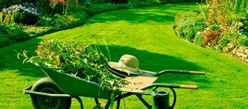 Limpieza y mantenimiento de jardines y áreas comunes